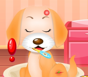 Play My Pet Doctor Puppy Care Game