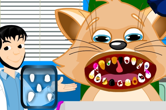 Play Cat Dental Care Game