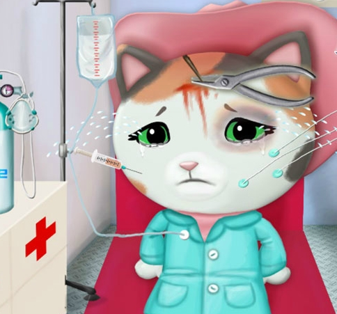 Play Sheriff Callie In The Ambulance Game
