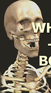 Play Wrack A Bone Game