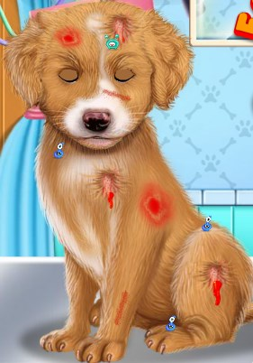 Play Fashion Pet Doctor Game