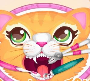 Play Precious Kitty Dentist Game