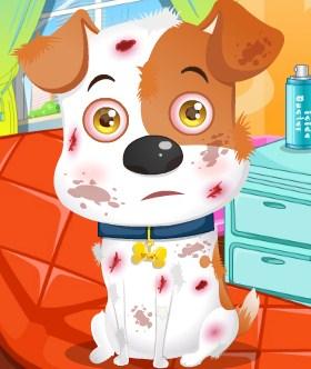 Play Pet Dog Care Game