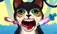 Play Become an Animal Dentist Game