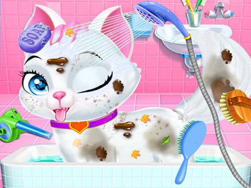 Play Pet Vet Care Wash Feed Animals Game